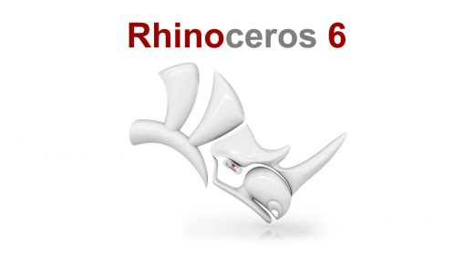 Rhinoceros 6.24 P